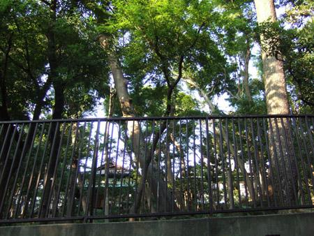 目切坂(NO.154)4