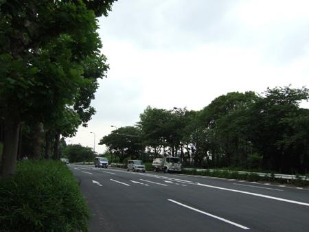 紀伊国坂(NO.142) 5
