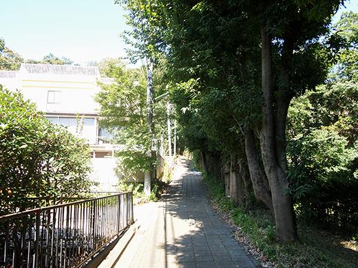 おんな坂(NO.254)7