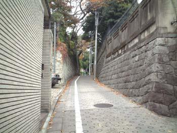 fujisaka_8_sakatotyu