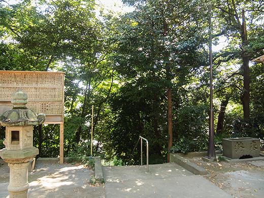岡本八幡神社のおとこ坂?そしてユーミンの石灯篭。。8