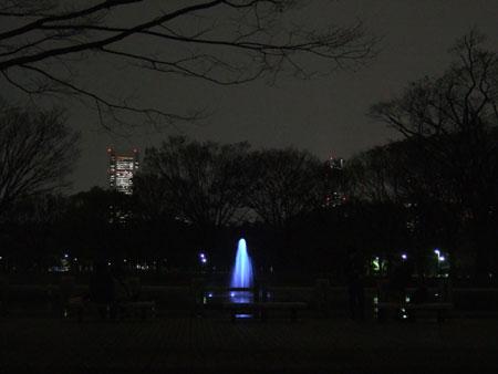 代々木公園ライトアップ2