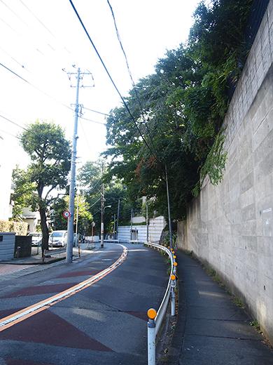 まむし坂(NO.252)8
