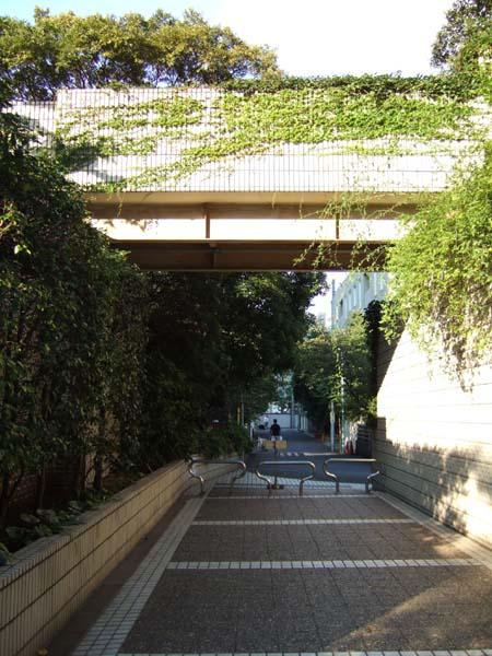 雁木坂 (NO.116) 3