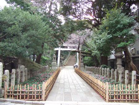 氷川坂 (NO.127) 3
