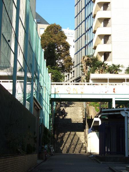 男坂(NO.218)5