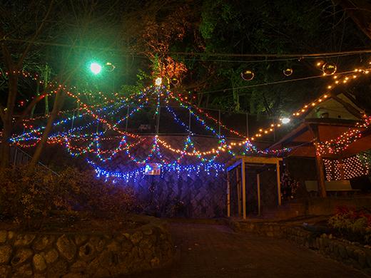 芦屋東山公園のライトアップ1