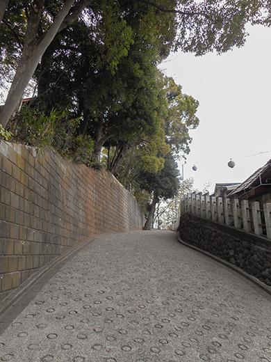 多摩川浅間神社の女坂かも?11