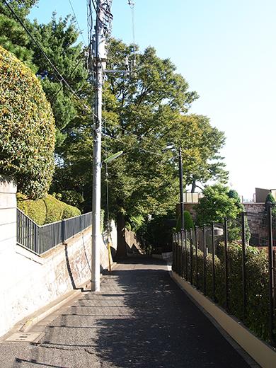 国分寺崖線の崖具合を楽しめる階段1