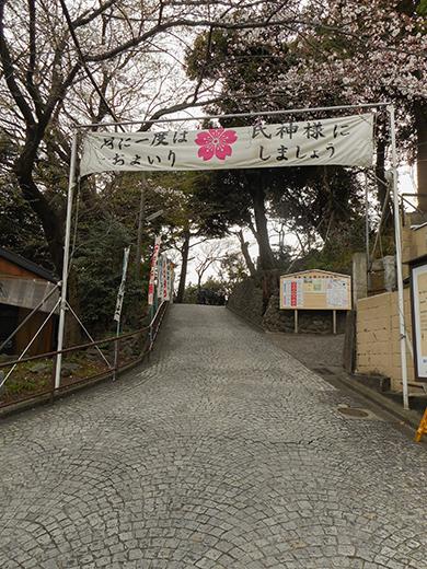 多摩川浅間神社の女坂かも?12