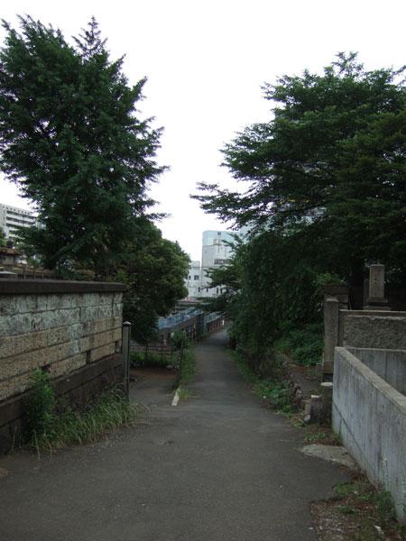 御隠殿坂(NO.202)1