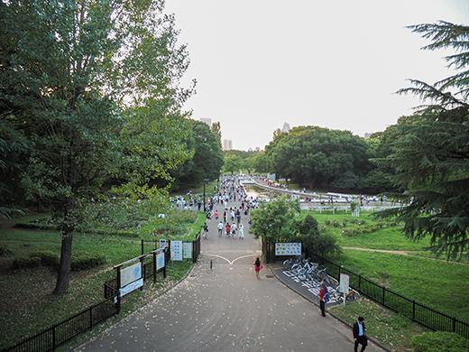 代々木公園定期観測2016-1