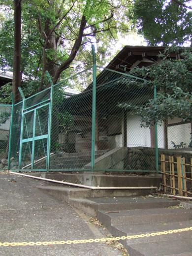 渋谷氷川神社のぐるぐるスロープ4