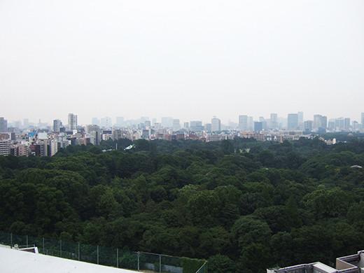 新宿タイムズスクエアからの国立競技場2