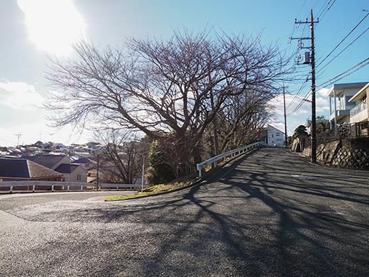聖蹟桜ヶ丘の天守台(関戸城跡)の階段と坂道8