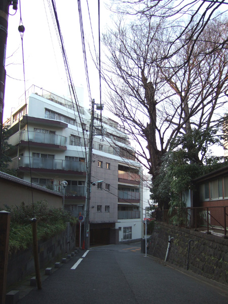 本氷川坂 (NO.130) 1