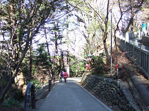 高尾山の女坂(NO.249)6