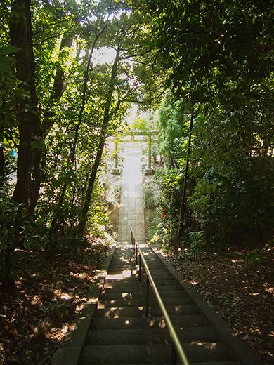 岡本八幡神社のおとこ坂?そしてユーミンの石灯篭。。6