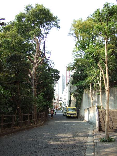 錦華坂(NO.217)5