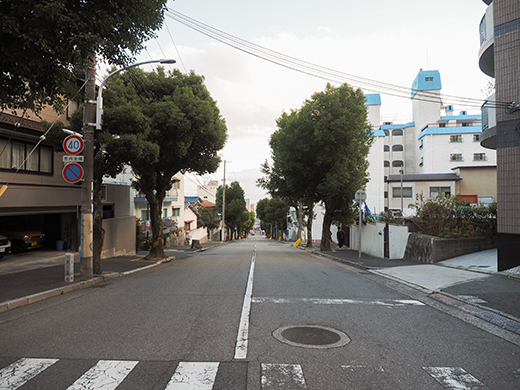 かすがの坂(NO.313)15
