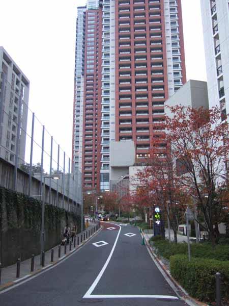 さくら坂 (NO.77) 07