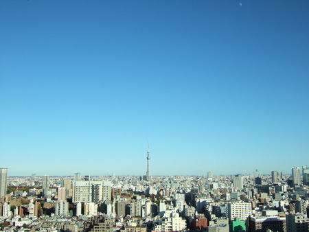 文京シビックセンターからの富士山3