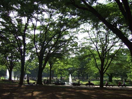 初夏の代々木公園