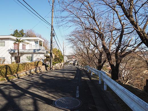 聖蹟桜ヶ丘の天守台(関戸城跡)の階段と坂道9