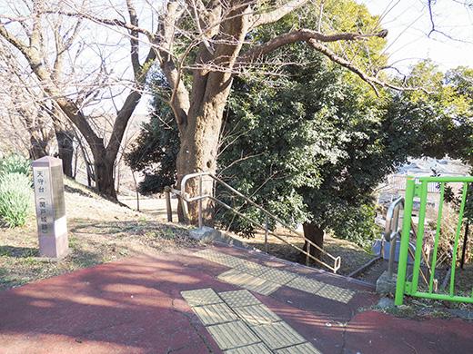 聖蹟桜ヶ丘の天守台(関戸城跡)の階段と坂道1