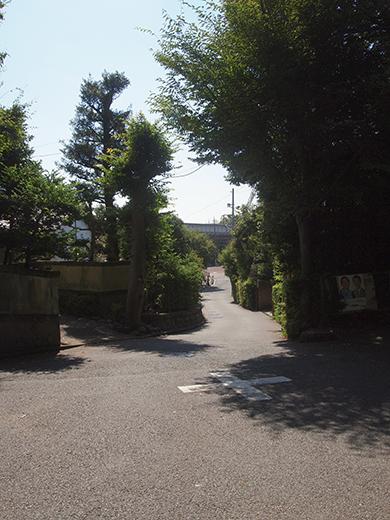 座頭ころがし坂 (NO.259)8