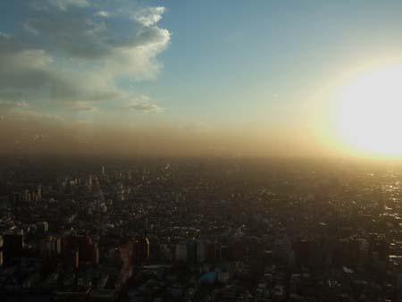 都庁の夕景1