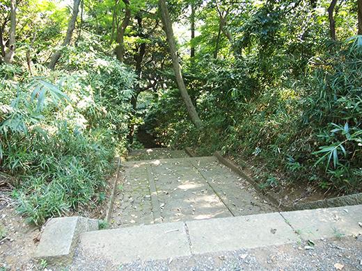 岩崎家玉川廟への階段2