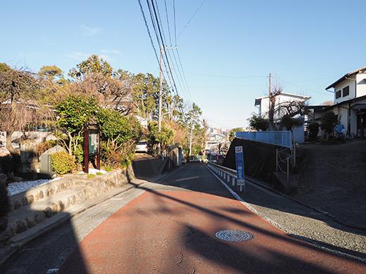 山の婆坂(NO.291)8