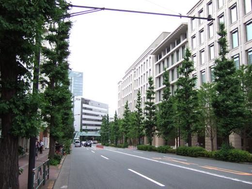 八ツ山の坂(NO.243)3