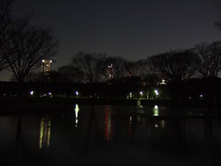 代々木公園18時