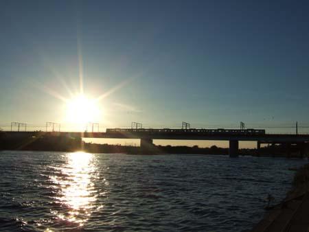 ひさしぶりに多摩川