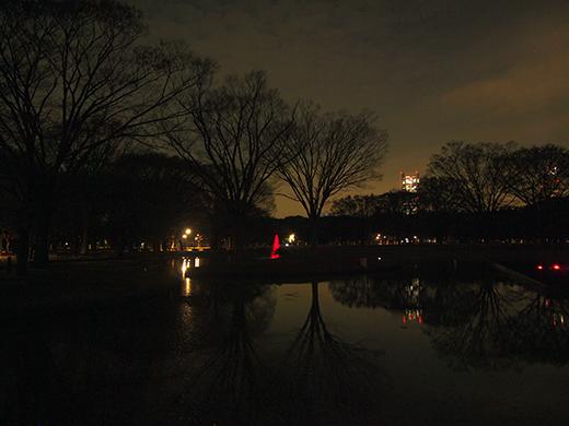 あの事件以来の代々木公園の夜1