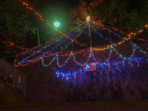 芦屋東山公園のライトアップ2