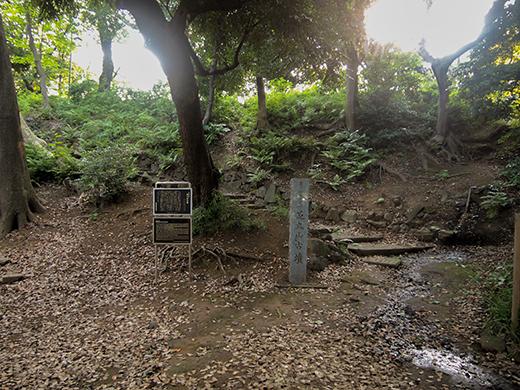 芝丸山古墳界隈の高低差1