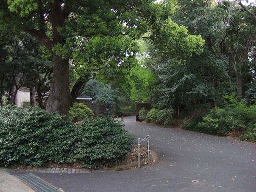 渋谷國學院と御用邸の横の坂6