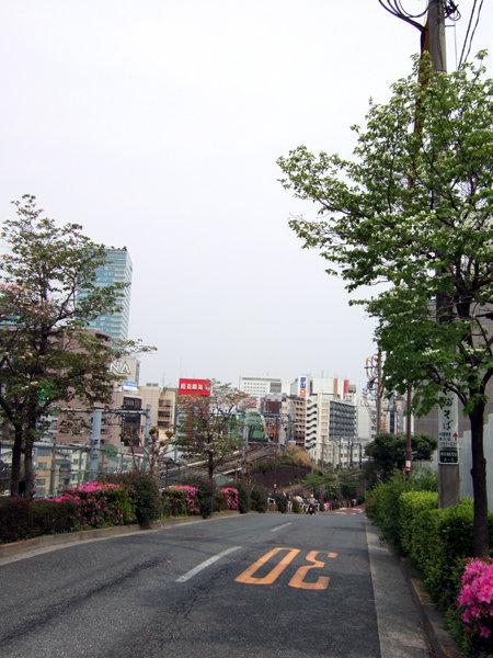 淡路坂(NO.209)4