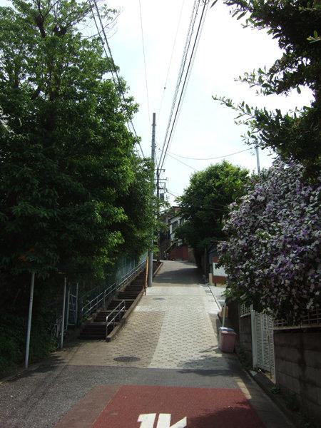 大田区中央5丁目のとある坂1