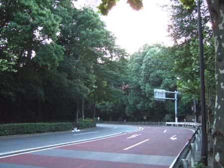 銀杏坂 (NO.111)3