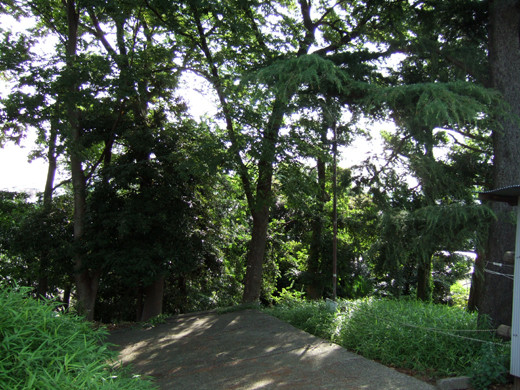 子安八幡神社のスロープ11