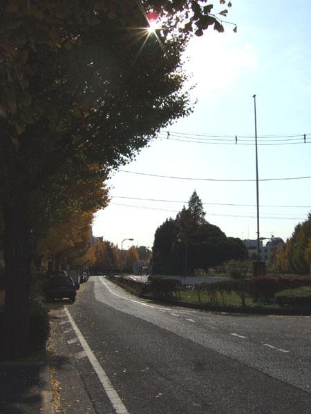 首都高新宿線の出入口あたりの坂1