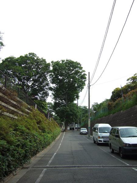 五重塔がある本門寺境内の坂1