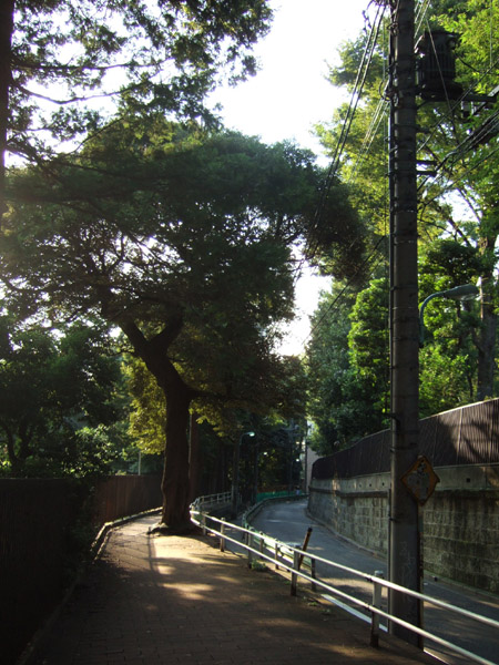 目切坂(NO.154)1