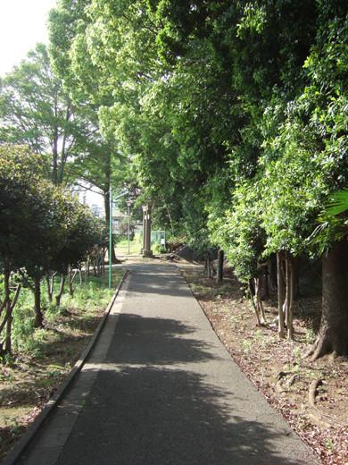 子安八幡神社のスロープ4