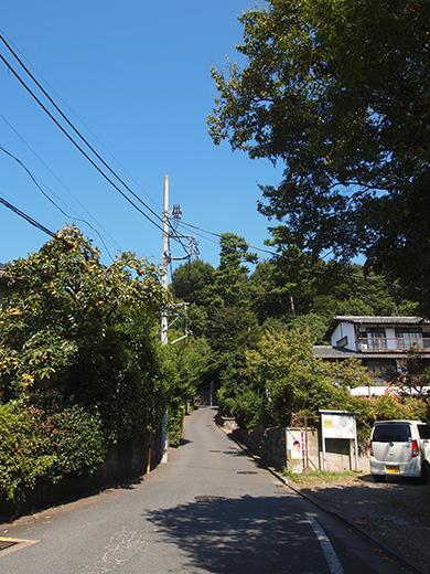 座頭ころがし坂 (NO.259)1