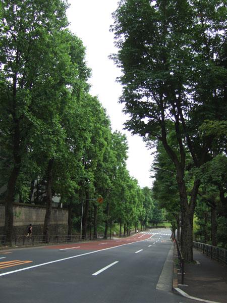 鮫河橋坂(NO.143)3